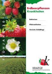 Erdbeerpflanzen Krankheiten Frü H ja H r 2013 - Kraege.de