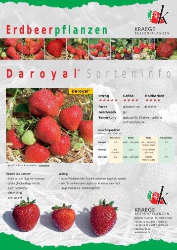 Daroyal Infobrief - Kraege.de