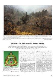 Sikkim – Im Zeichen des Roten Panda