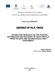 ABSTRACT OF Ph.D. THESIS