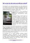 Informationsbroschüre - Stadt Kraichtal - Seite 5