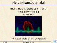 Seminar1 Herzaktionspotential/Arbeitsdiagramm Grundformen ...
