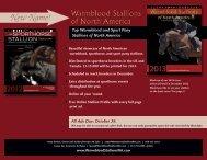 media kit - WarmbloodStallionsNA.com