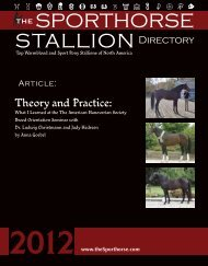 Please click here to download a PDF of - WarmbloodStallionsNA.com