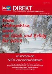 Frohe Weihnachten sowie viel Glück und Erfolg für 2013 - SPÖ