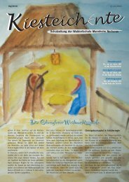 Kiesteichente Dezember 2010 - Freie Waldorfschule Mannheim