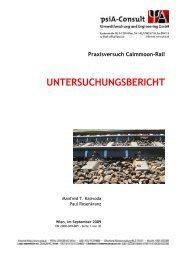Untersuchungsbericht Deutsch Wagram