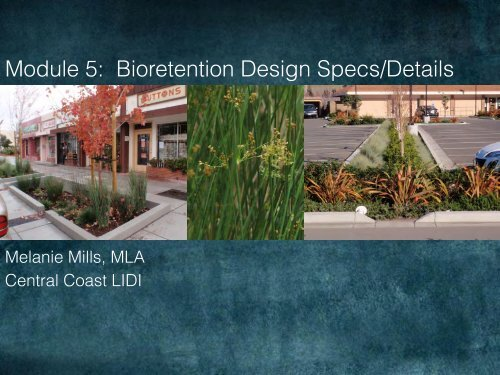 Module 5: Bioretention Design Specs Details - Melanie Mills