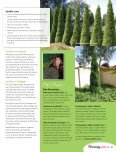 Conifer Chic - Page 2