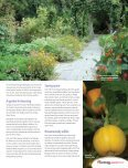 The Curators Garden - Page 2