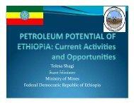 Tolesa Shagi State Minister Ministry of Mines Federal Democratic ...