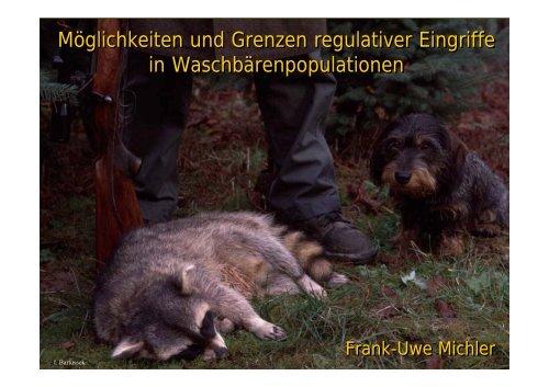 Präsentation als PDF - Projekt Waschbär