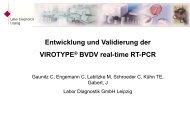 virotype® bvdv - Labor Diagnostik GmbH