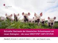 Schneller Nachweis der klassischen Schweinepest mit neuer ...