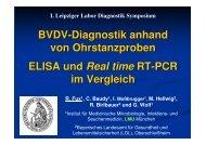 BVDV-Diagnostik aus Ohrstanzproben – ELISA und Real time