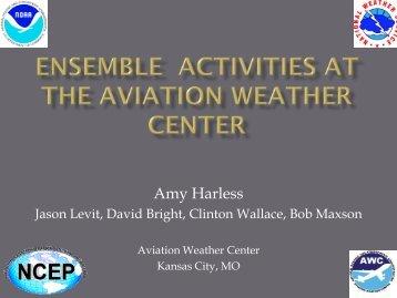 Ensemble Activities at the Aviation Weather Center - Developmental ...