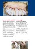 SPF-Danmark - Visit Sebrochure.dk - Seite 3