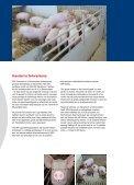 SPF-Danmark - Visit Sebrochure.dk - Seite 5