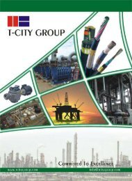 Complete Package - T-City Group