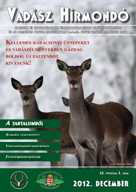 legjobb balti társkereső oldal