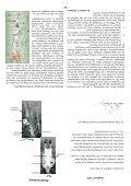 Broschüre Druckvorlage (9,6 MB) - Pilse Suchen Online - Seite 4