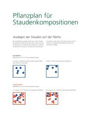 Pflanzplan für Staudenkompositionen - Frikarti Stauden AG
